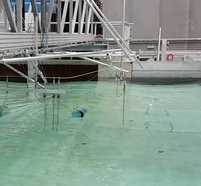 SEATURNS - Wave Energy Converyer Tank Test in Aalborg